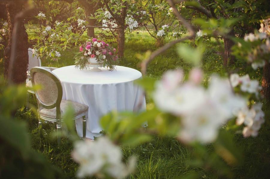 Aranżacja z kwiatów w ogrodzie